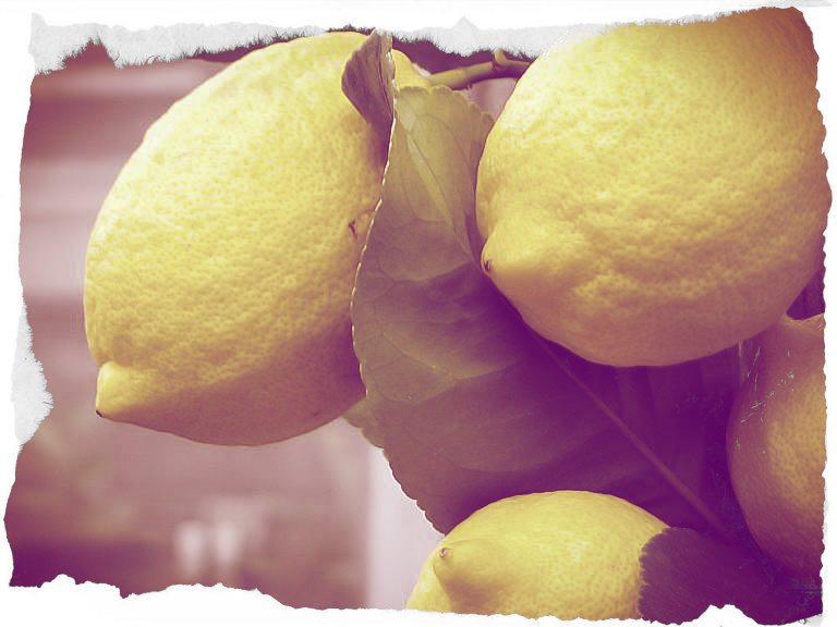 La Zuppa di Limoni